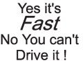 Yes-It-is-Fast-(misc126.jpg)